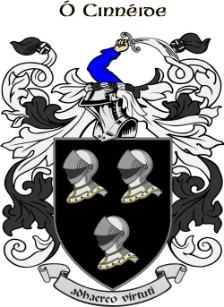 KENNEDY family crest